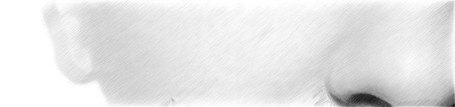 Ästhetische Behandlung der Wangen | hautok und hautok cosmetics